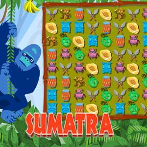 Sports Illustrated Kids's online Sumatra game
