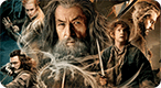 "Which Character From ""The Hobbit"" Are You?: Are you Fili or Kili? Or Oin or Gloin?"