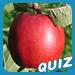 Connaissez-vous bien les pommes?