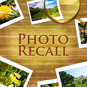 Parade's online Photo Recall game