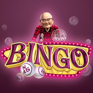 Express's online Bingo Multiplayer game